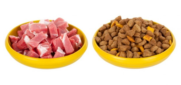 ração e alimentação natural